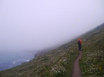 P1050744[2339]diagonal mist