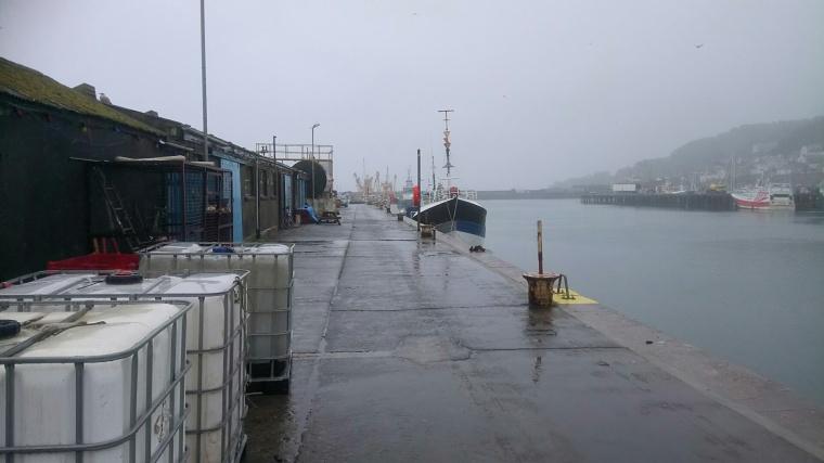 DSC_2279[2561]penzance harbour 4
