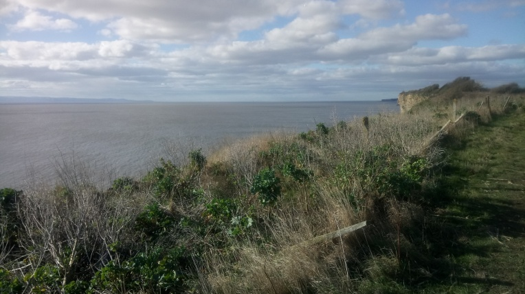England on the horizon from Wales Coast Path