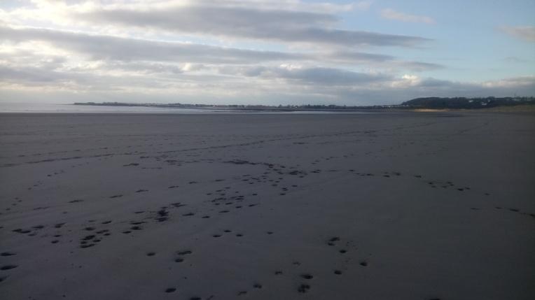 merthyr mawr warren tide out porthcawl