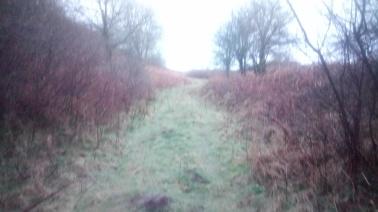 lost near mawdlam