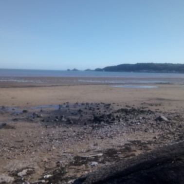 mumbles from swansea bay